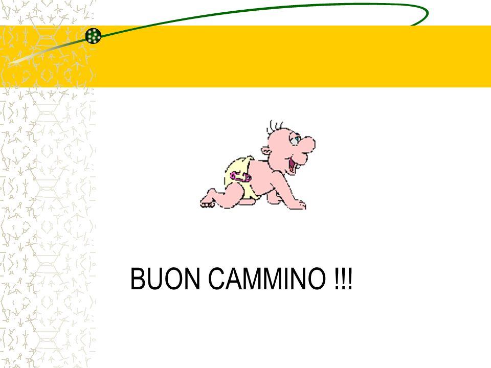 BUON CAMMINO !!!