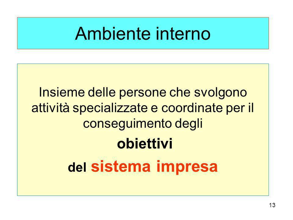 13 Ambiente interno Insieme delle persone che svolgono attività specializzate e coordinate per il conseguimento degli obiettivi del sistema impresa