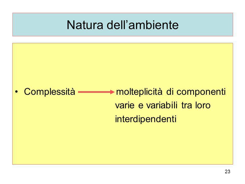 23 Natura dellambiente Complessità molteplicità di componenti varie e variabili tra loro interdipendenti
