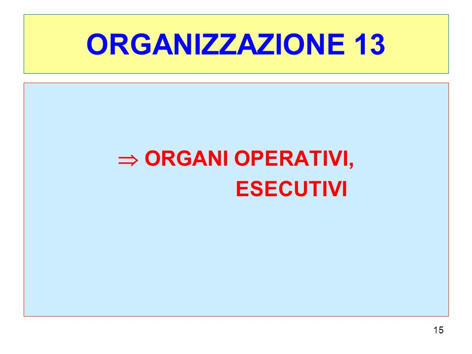 15 ORGANIZZAZIONE 13 ORGANI OPERATIVI, ESECUTIVI