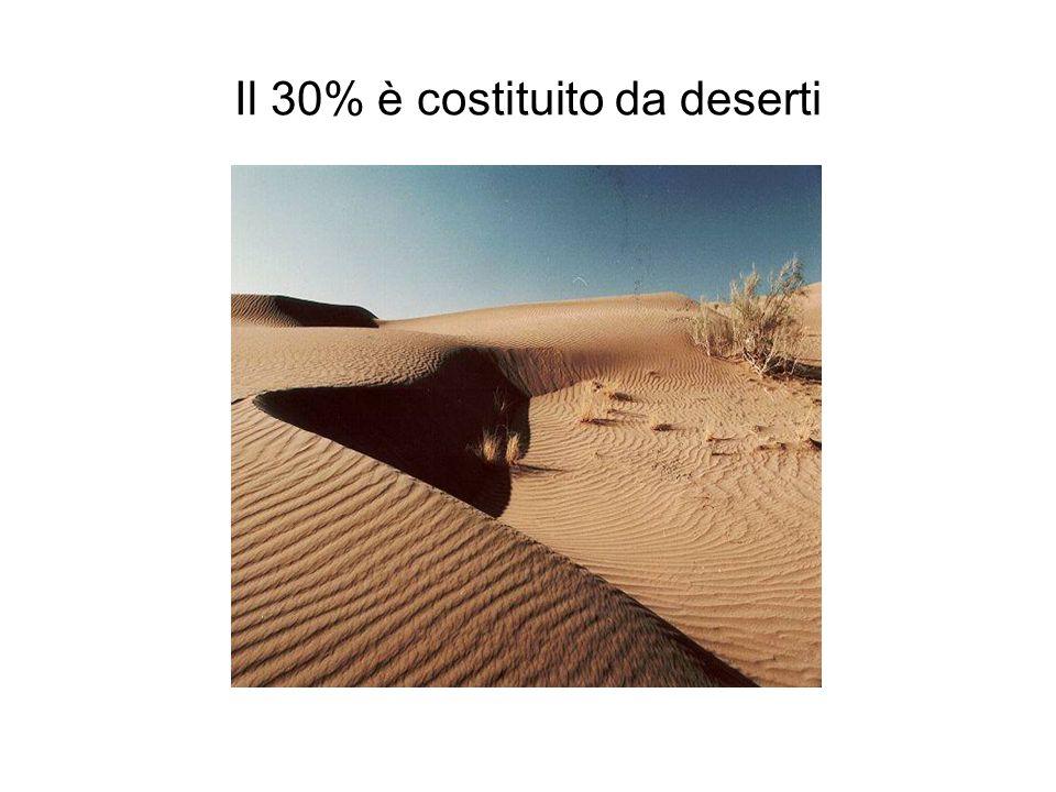 Il 3% è costituito da stagni e paludi