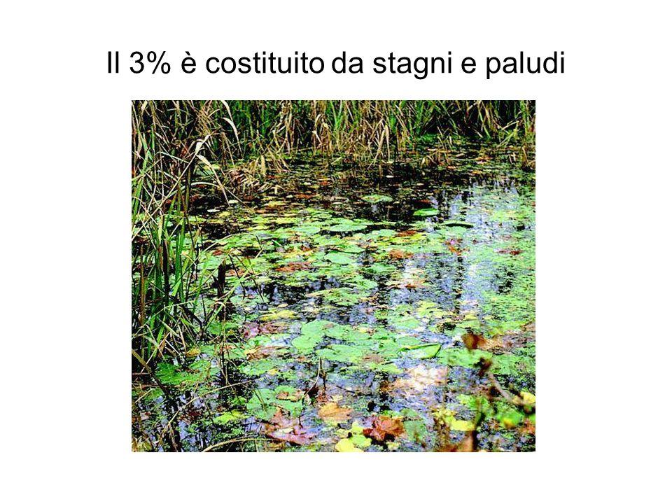 e infine l11% è costituito da terreni agricoli 1,377·10 10 ha x 11% = 1,51·10 9 ha