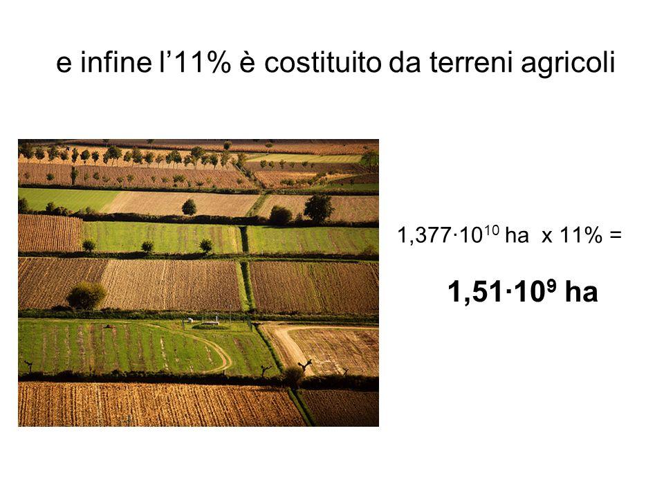 La popolazione del mondo è attualmente di circa 6,85·10 9 abitanti pertanto gli ettari di terra per abitante sono… 20,1 ha/ab