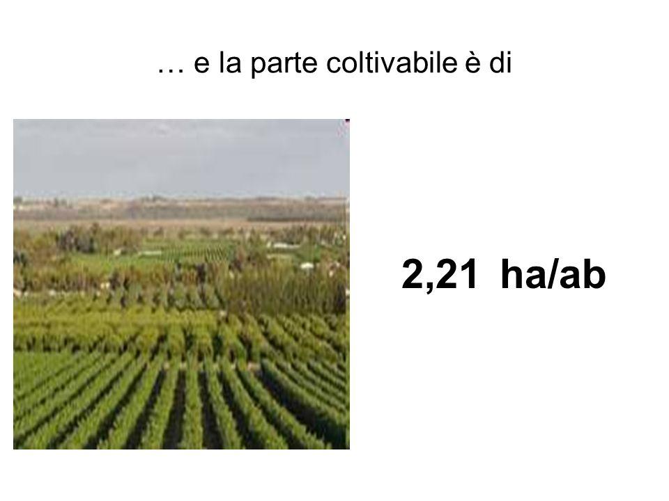 … e la parte coltivabile è di 2,21 ha/ab