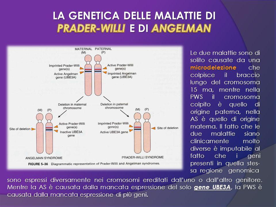 Le due malattie sono di solito causate da una microdelezione che colpisce il braccio lungo del cromosoma 15 ma, mentre nella PWS il cromosoma colpito
