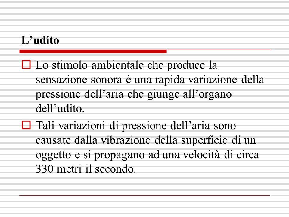 Ludito Lo stimolo ambientale che produce la sensazione sonora è una rapida variazione della pressione dellaria che giunge allorgano delludito. Tali va