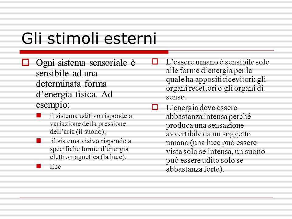 Gli stimoli esterni Ogni sistema sensoriale è sensibile ad una determinata forma denergia fisica. Ad esempio: il sistema uditivo risponde a variazione