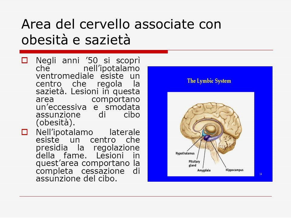 Area del cervello associate con obesità e sazietà Negli anni 50 si scoprì che nellipotalamo ventromediale esiste un centro che regola la sazietà.
