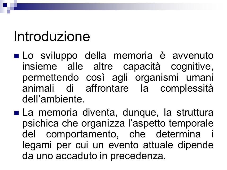 Introduzione Lo sviluppo della memoria è avvenuto insieme alle altre capacità cognitive, permettendo così agli organismi umani animali di affrontare l