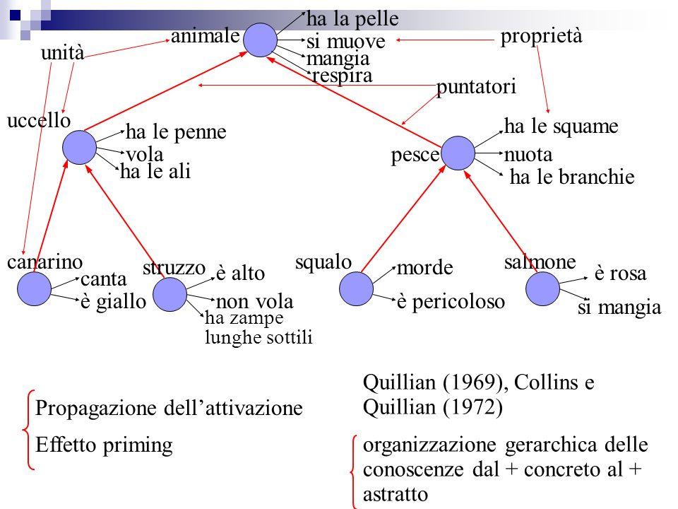 Propagazione dellattivazione Effetto priming Quillian (1969), Collins e Quillian (1972) organizzazione gerarchica delle conoscenze dal + concreto al +