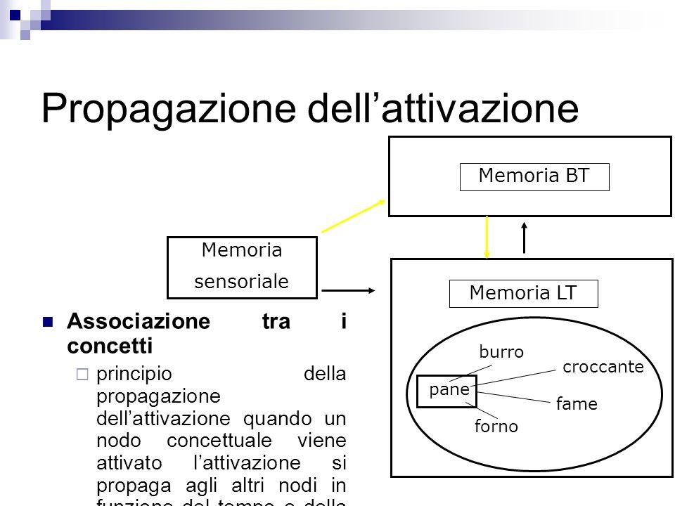 Propagazione dellattivazione Associazione tra i concetti principio della propagazione dellattivazione quando un nodo concettuale viene attivato lattiv