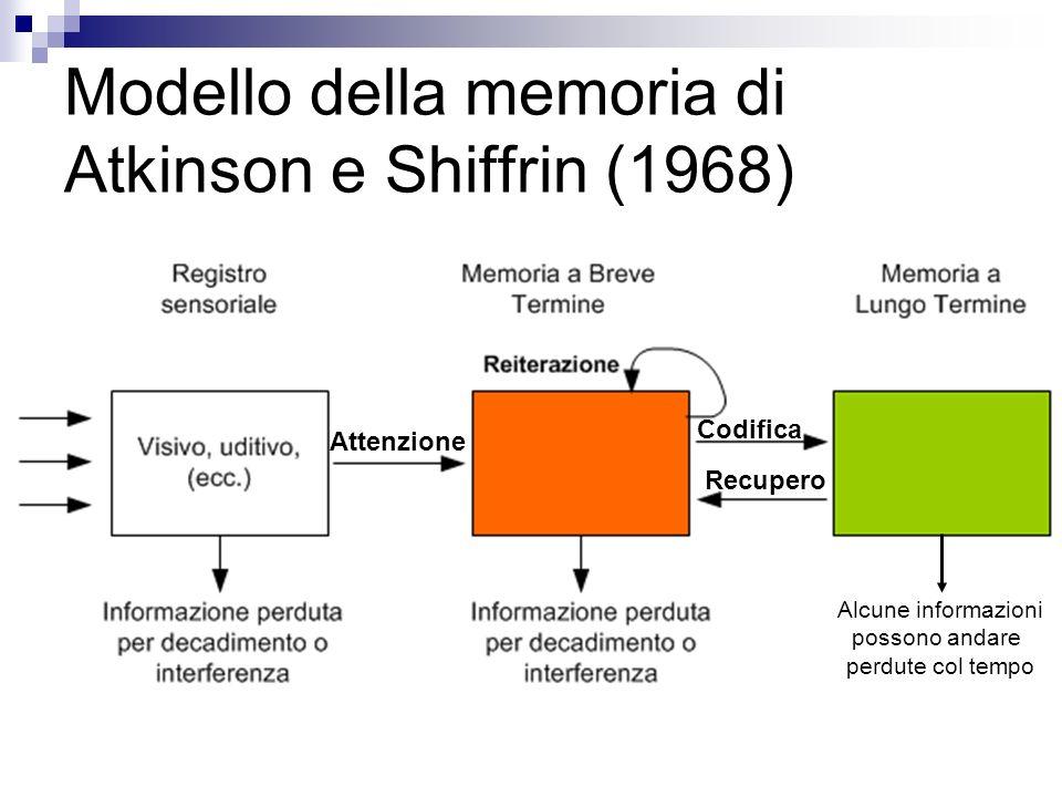 Modello della memoria di Atkinson e Shiffrin (1968) Attenzione Recupero Codifica Alcune informazioni possono andare perdute col tempo