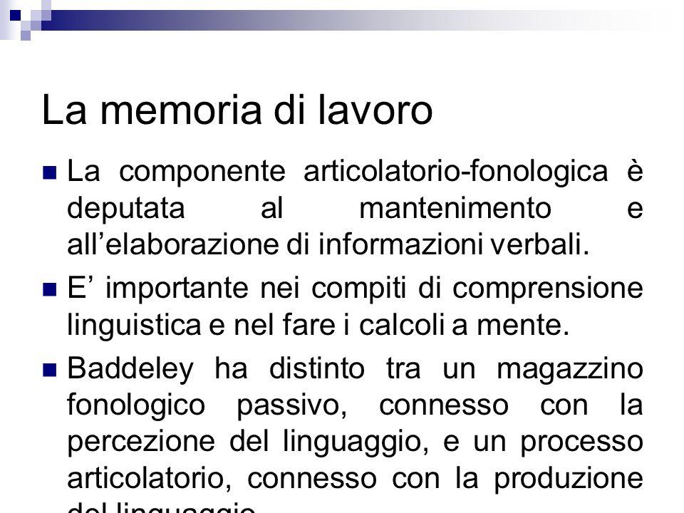 La memoria di lavoro La componente articolatorio-fonologica è deputata al mantenimento e allelaborazione di informazioni verbali. E importante nei com