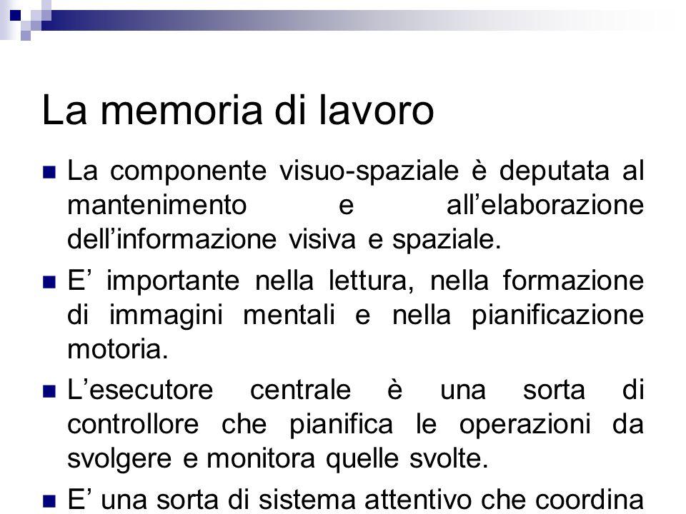 La memoria di lavoro La componente visuo-spaziale è deputata al mantenimento e allelaborazione dellinformazione visiva e spaziale. E importante nella