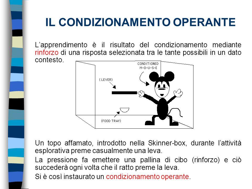 IL CONDIZIONAMENTO OPERANTE Lapprendimento è il risultato del condizionamento mediante rinforzo di una risposta selezionata tra le tante possibili in
