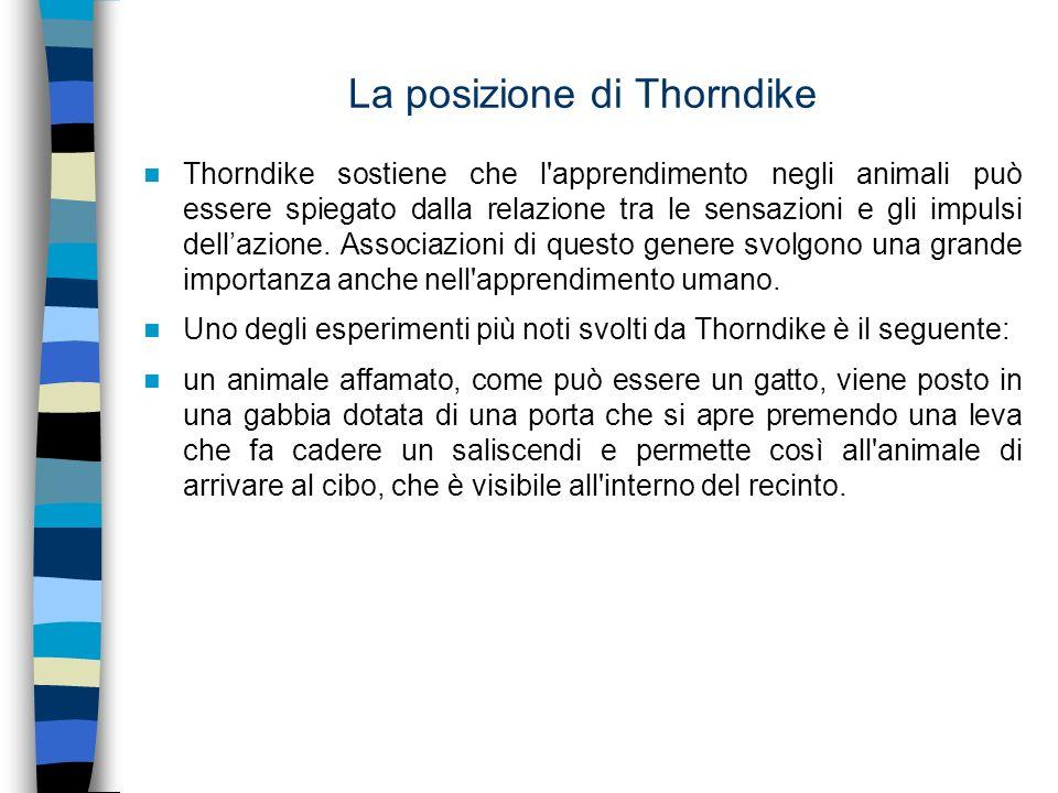 La posizione di Thorndike Thorndike sostiene che l'apprendimento negli animali può essere spiegato dalla relazione tra le sensazioni e gli impulsi del