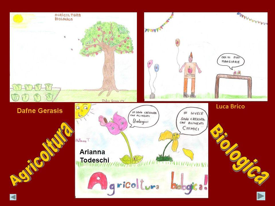 Dafne Gerasis Luca Brico Arianna Todeschi
