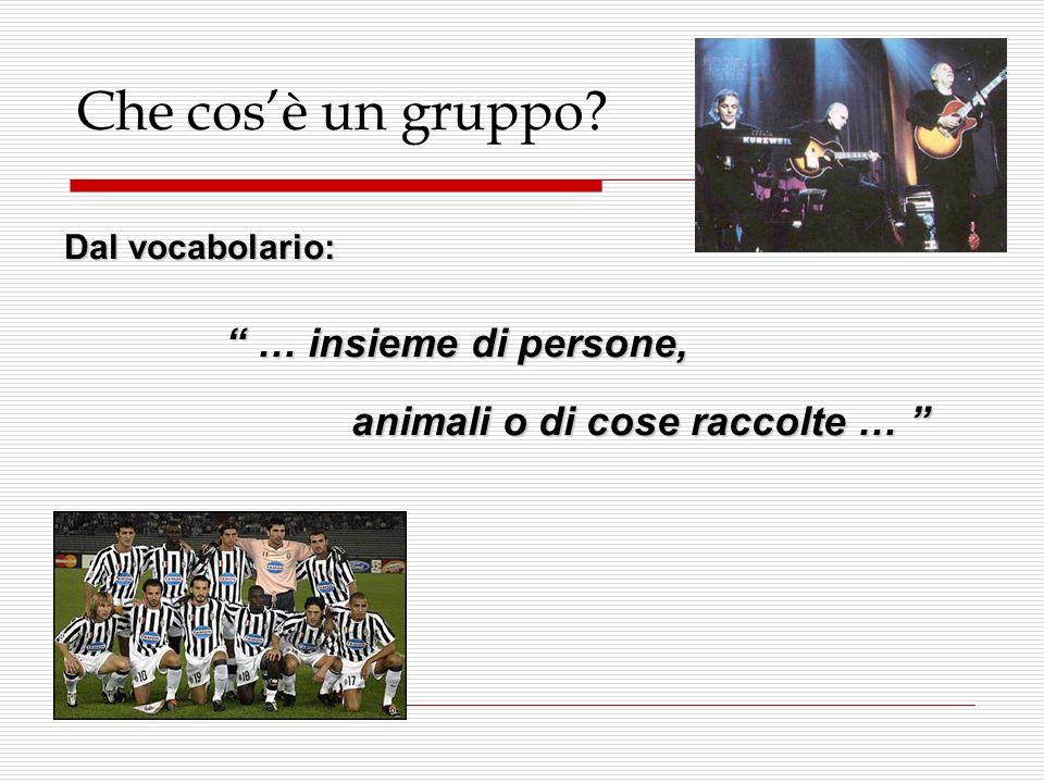 Che cosè un gruppo? Dal vocabolario: … insieme di persone, … insieme di persone, animali o di cose raccolte … animali o di cose raccolte …