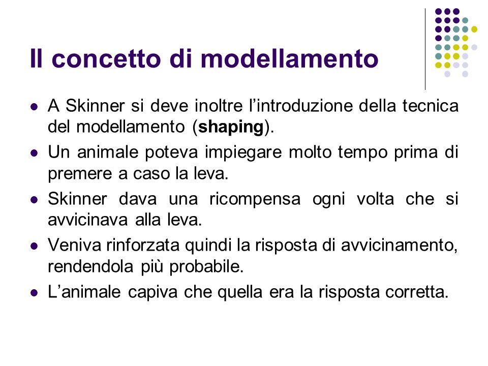 Il concetto di modellamento A Skinner si deve inoltre lintroduzione della tecnica del modellamento (shaping). Un animale poteva impiegare molto tempo