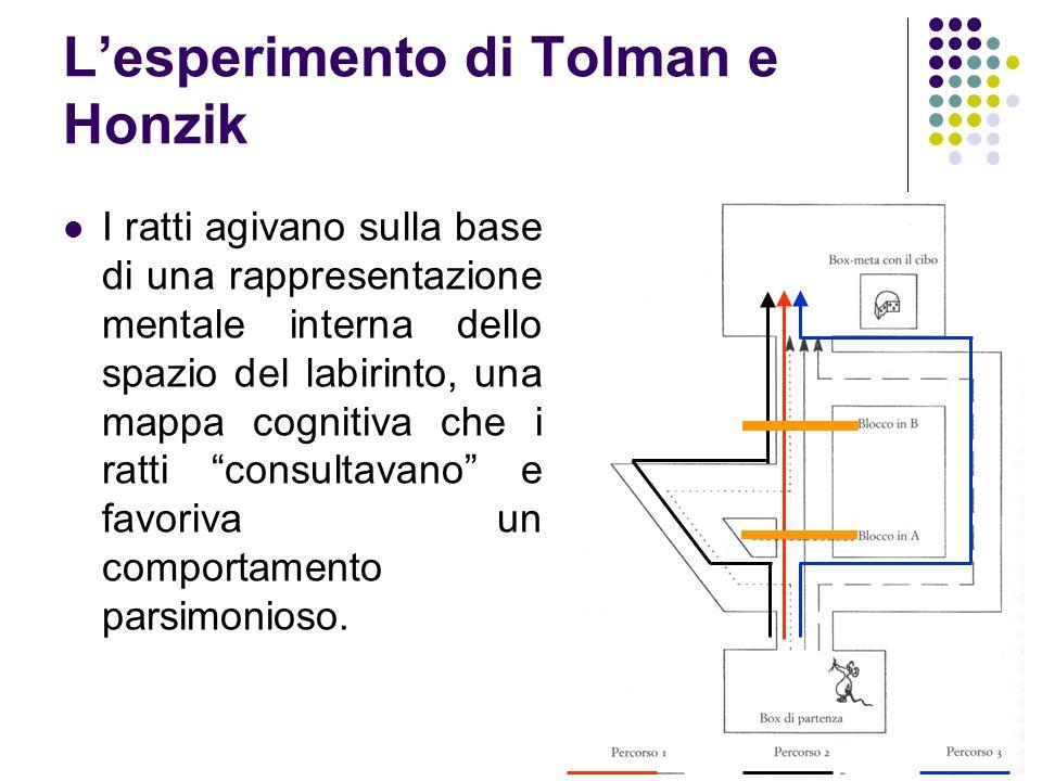 Lesperimento di Tolman e Honzik I ratti agivano sulla base di una rappresentazione mentale interna dello spazio del labirinto, una mappa cognitiva che