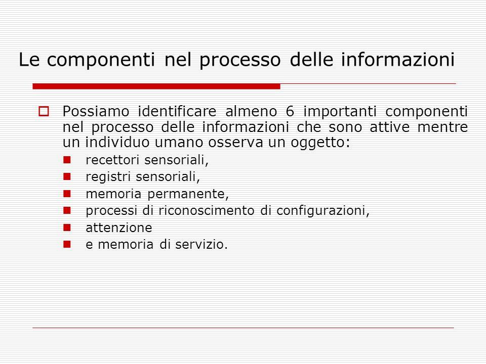 Le componenti nel processo delle informazioni Possiamo identificare almeno 6 importanti componenti nel processo delle informazioni che sono attive men