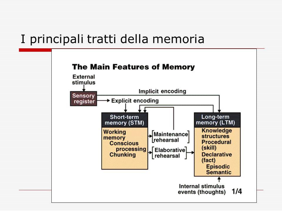 I principali tratti della memoria