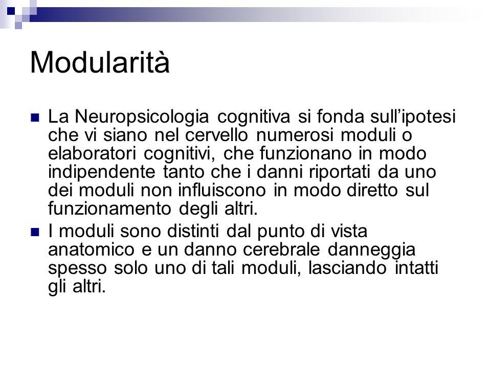 Modularità La Neuropsicologia cognitiva si fonda sullipotesi che vi siano nel cervello numerosi moduli o elaboratori cognitivi, che funzionano in modo