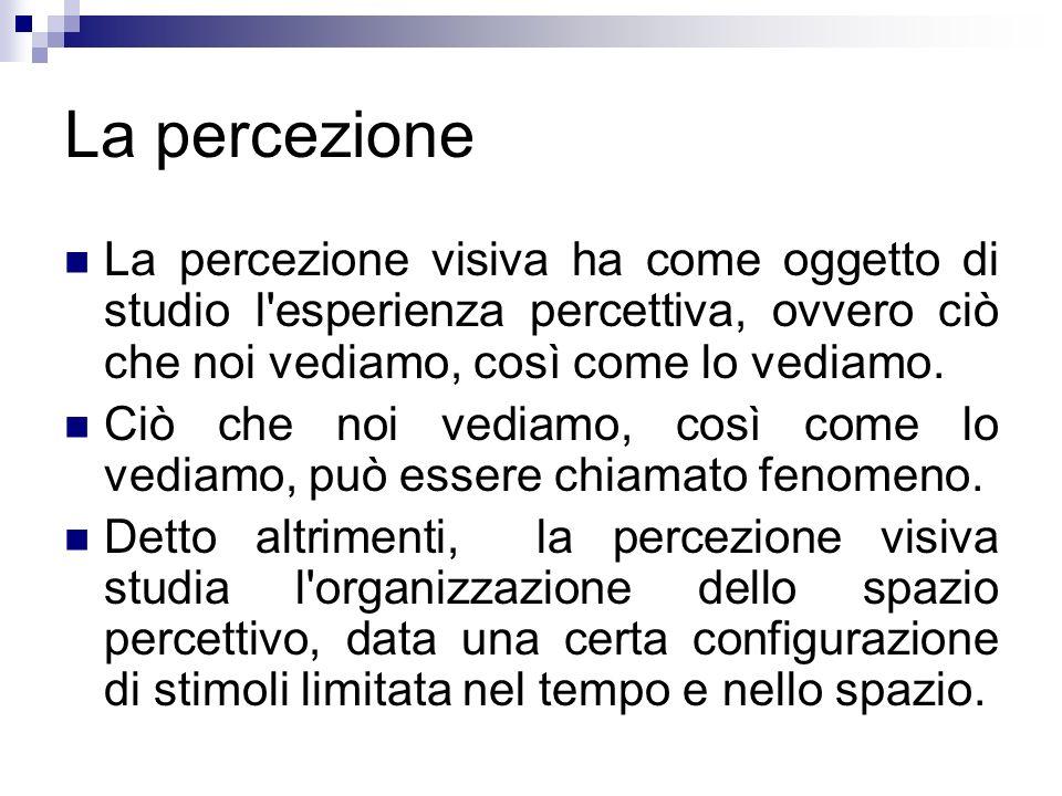La percezione La percezione visiva ha come oggetto di studio l'esperienza percettiva, ovvero ciò che noi vediamo, così come lo vediamo. Ciò che noi ve