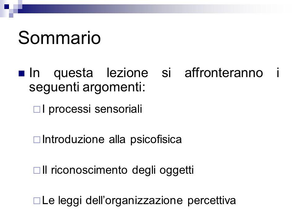 Sommario In questa lezione si affronteranno i seguenti argomenti: I processi sensoriali Introduzione alla psicofisica Il riconoscimento degli oggetti