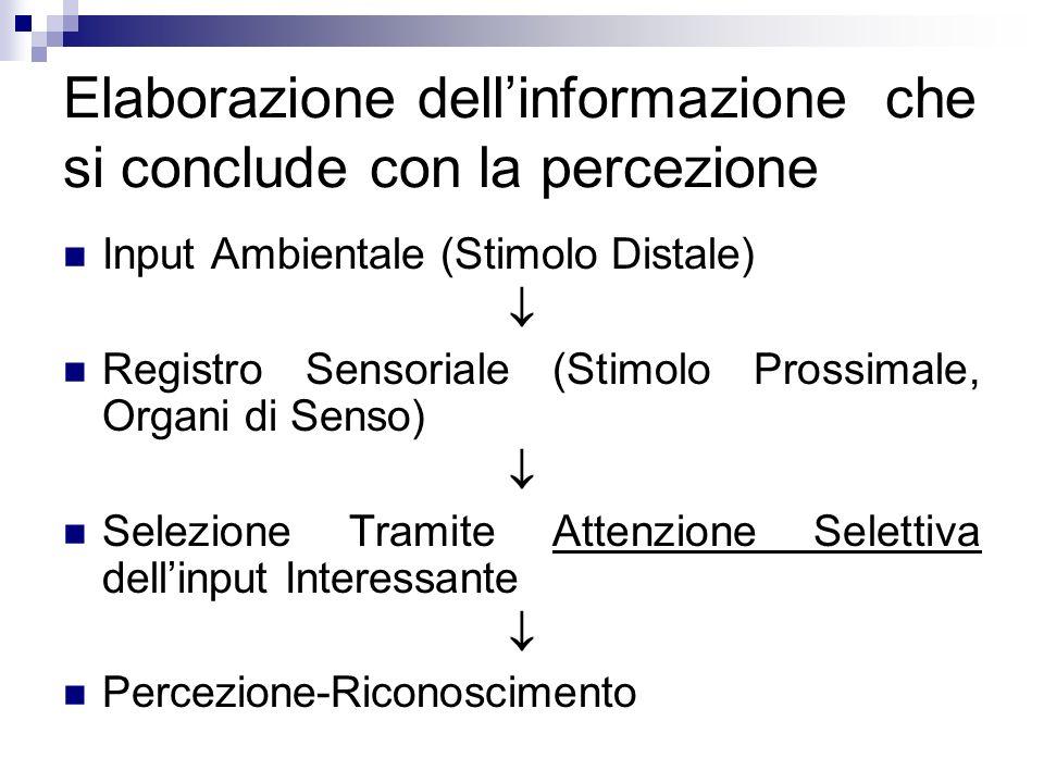 Elaborazione dellinformazione che si conclude con la percezione Input Ambientale (Stimolo Distale) Registro Sensoriale (Stimolo Prossimale, Organi di
