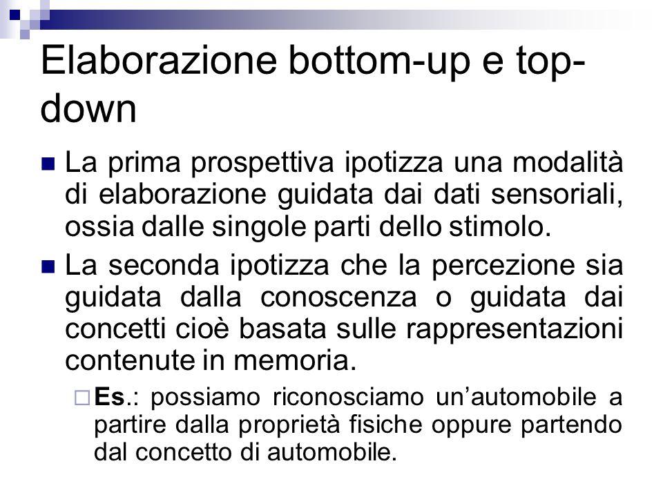 Elaborazione bottom-up e top- down La prima prospettiva ipotizza una modalità di elaborazione guidata dai dati sensoriali, ossia dalle singole parti d