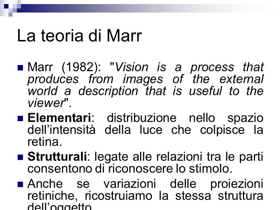 La teoria di Marr Marr (1982):