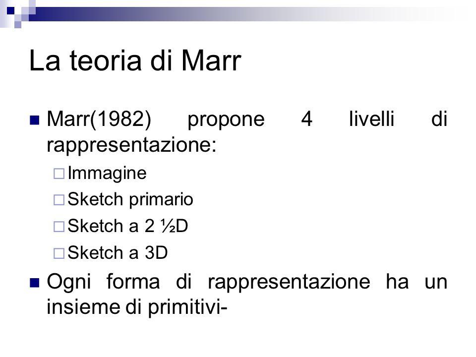 La teoria di Marr Marr(1982) propone 4 livelli di rappresentazione: Immagine Sketch primario Sketch a 2 ½D Sketch a 3D Ogni forma di rappresentazione
