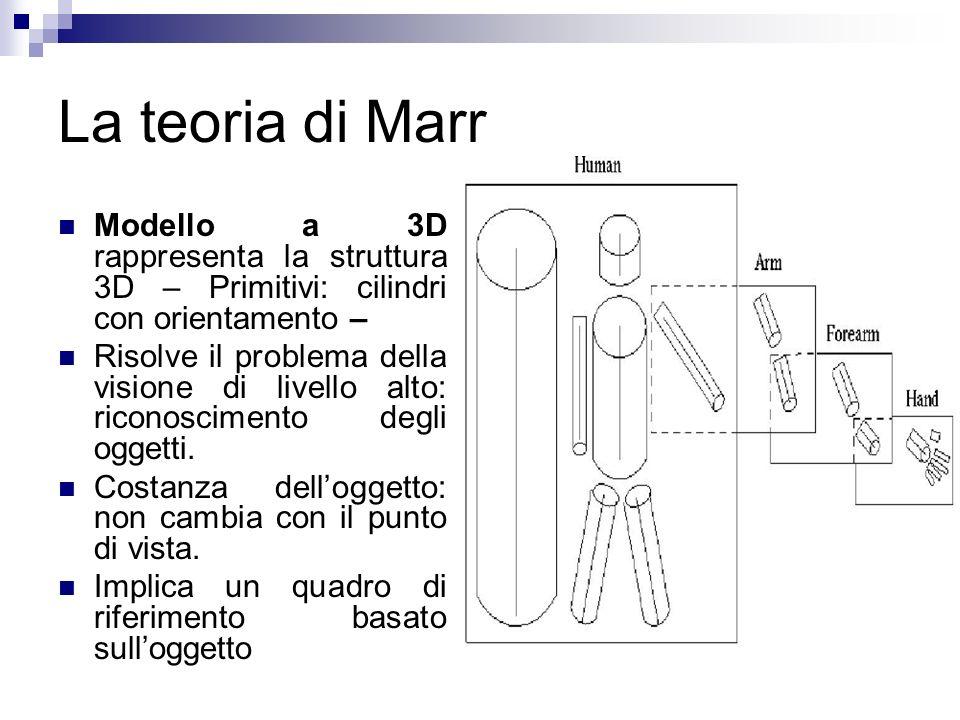 La teoria di Marr Modello a 3D rappresenta la struttura 3D – Primitivi: cilindri con orientamento – Risolve il problema della visione di livello alto: