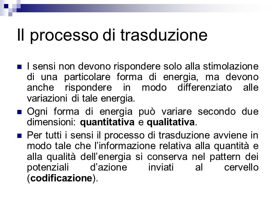 Problema Quale fiducia dare agli organi di senso e alla percezione, che si fonda sui dati da essi rilevati.