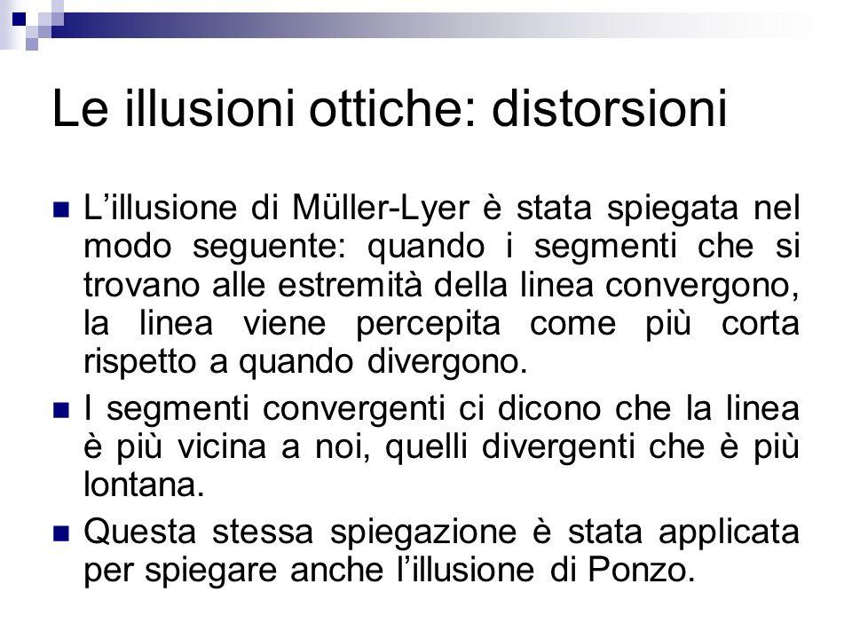 Le illusioni ottiche: distorsioni Lillusione di Müller-Lyer è stata spiegata nel modo seguente: quando i segmenti che si trovano alle estremità della