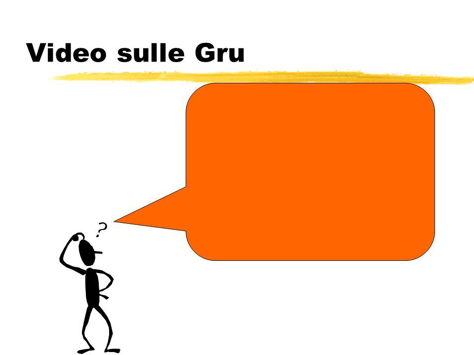 Video sulle Gru