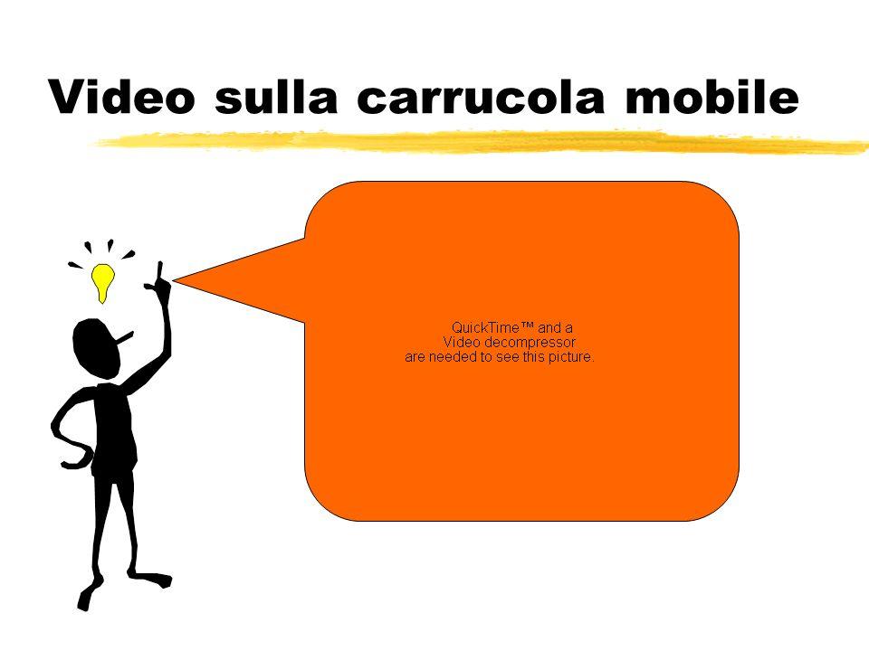 Video sulla carrucola mobile