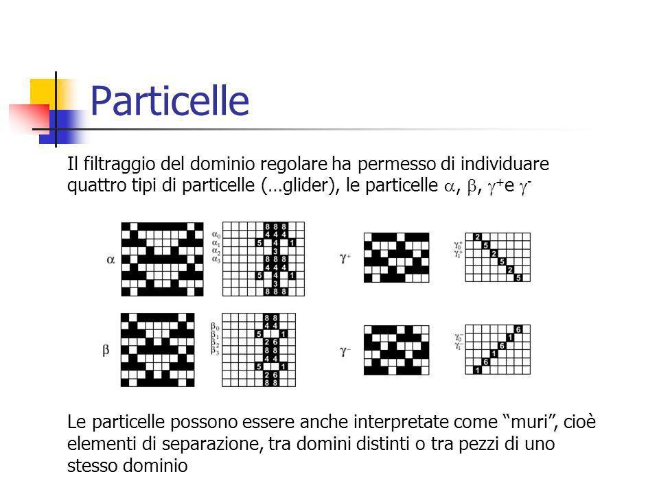 Particelle Il filtraggio del dominio regolare ha permesso di individuare quattro tipi di particelle (…glider), le particelle,, + e - Le particelle possono essere anche interpretate come muri, cioè elementi di separazione, tra domini distinti o tra pezzi di uno stesso dominio