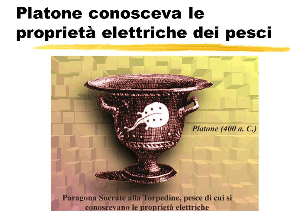 Platone conosceva le proprietà elettriche dei pesci