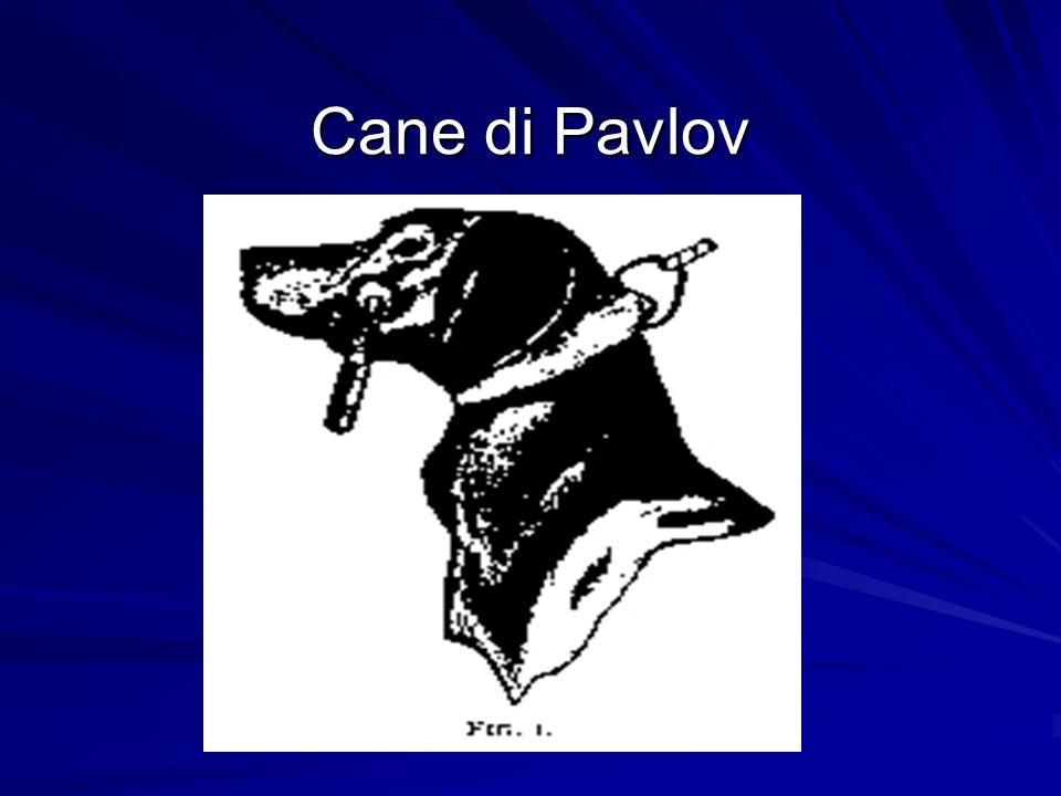 Cane di Pavlov