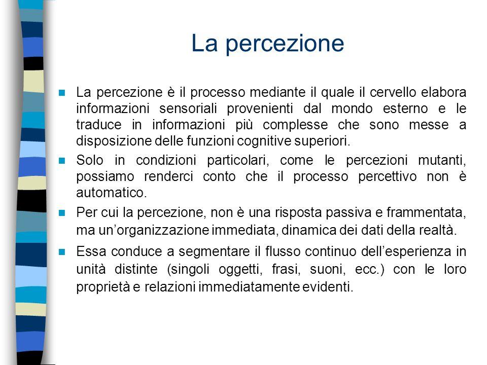 Le illusioni percettive Il processo percettivo, non è semplice né lineare.