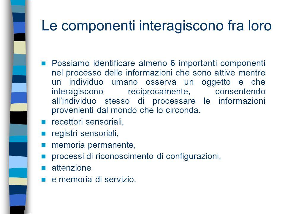 Le componenti interagiscono fra loro Possiamo identificare almeno 6 importanti componenti nel processo delle informazioni che sono attive mentre un in