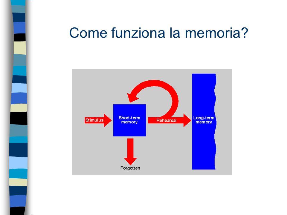 Come funziona la memoria?