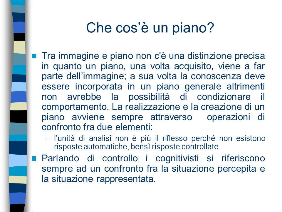 Che cosè un piano? Tra immagine e piano non c'è una distinzione precisa in quanto un piano, una volta acquisito, viene a far parte dellimmagine; a sua