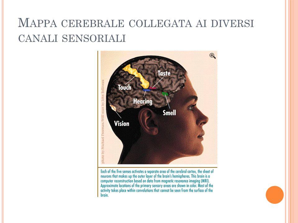 I L PROBLEMA DELLE SOGLIE DI SENSIBILITÀ UMANA Quando la Psicologia sperimentale nacque, numerose furono le ricerche che avevano come oggetto lo studio dei limiti della sensibilità umana.
