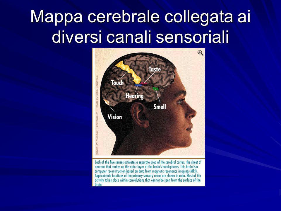 Il problema delle soglie di sensibilità umana Quando la Psicologia sperimentale nacque, numerose furono le ricerche che avevano come oggetto lo studio dei limiti della sensibilità umana.
