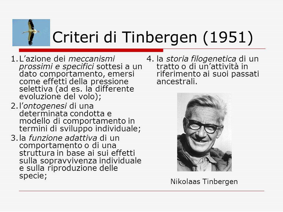 Criteri di Tinbergen (1951) 1.Lazione dei meccanismi prossimi e specifici sottesi a un dato comportamento, emersi come effetti della pressione seletti
