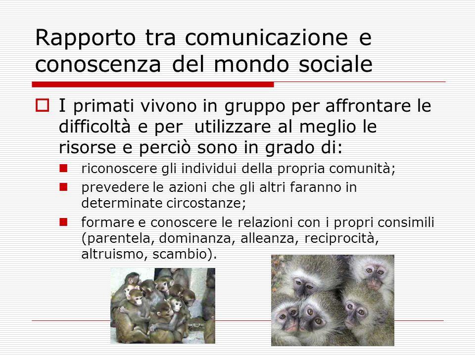 Rapporto tra comunicazione e conoscenza del mondo sociale I primati vivono in gruppo per affrontare le difficoltà e per utilizzare al meglio le risors
