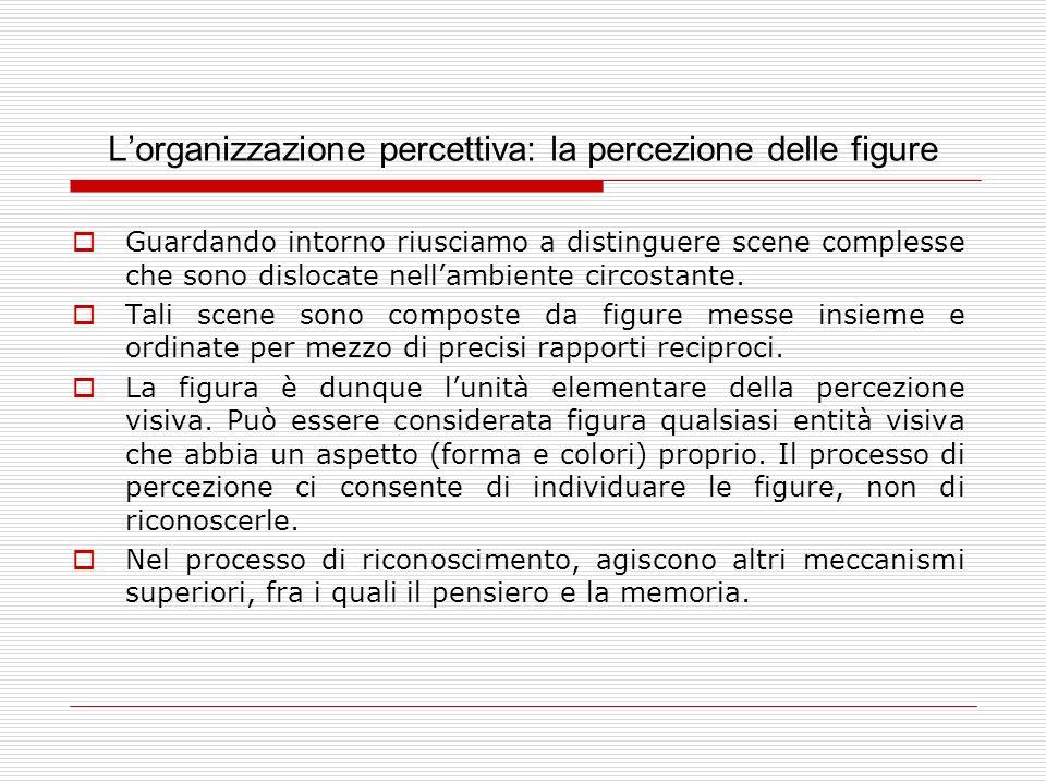 Lorganizzazione percettiva: la percezione delle figure Guardando intorno riusciamo a distinguere scene complesse che sono dislocate nellambiente circo